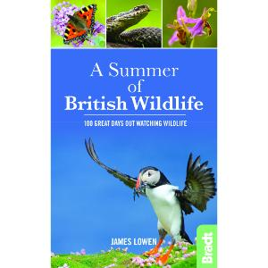 A Summer of British Wildlife by James Lowen