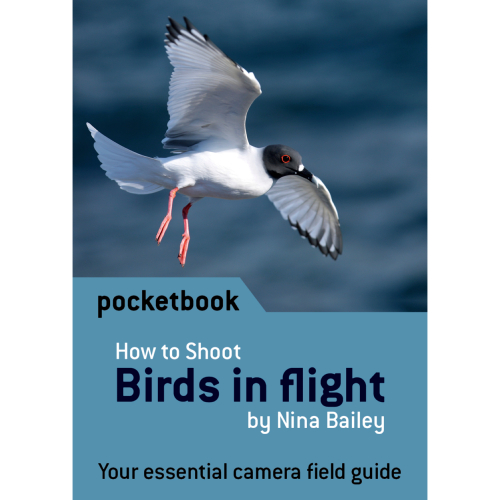 How to shoot: Birds in flight Pocketbook