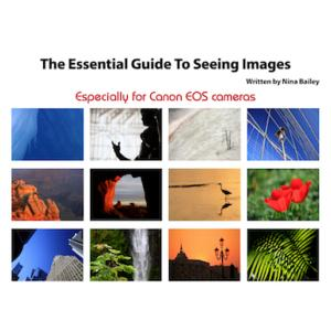 Essential Guide to Seeing Images by Nina Bailey (reprint)
