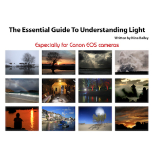 Essential Guide to Understanding Light by Nina Bailey (reprint)
